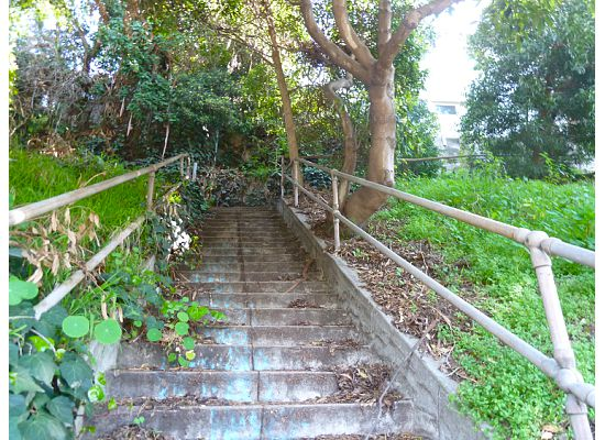 This Is Rustic Canyon Loop In Santa Monica Stair Walk 40 From The Book Secret Stairs By Charles Fleming