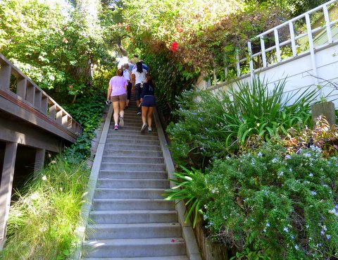 High Quality ... Santa Monica Rustic Canyon From His Book U201cSecret Stairs A Walking Guide  To The Historic Staircases Of Los Angeles.u201d I Have Done This Walk Twice And  Itu0027s ...
