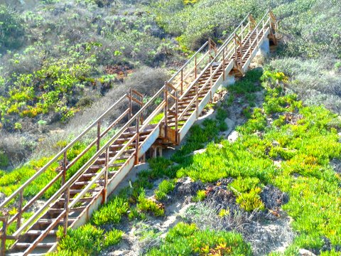 ... Los Angeles County Is Point Dume Nature Reserve. Stairs Up