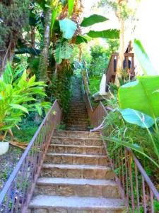 beachwood cyn- stairs up -karen-wood